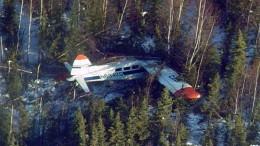 de Havilland DHC-2