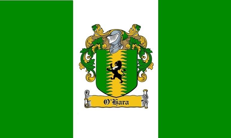 Civil Air Patrol Jeff O'Hara Flag